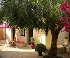 HuisjeTeHuur Bed and Breakfast Portugal Algarve Moncarapacho